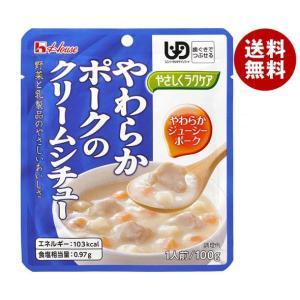 【送料無料】ハウス食品 やさしくラクケア やわらかポークのクリームシチュー 100g×40個入 misonoya