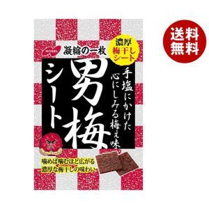 【送料無料】ノーベル製菓 男梅シート 27g×6袋入 misonoya