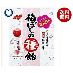 【送料無料】ノーベル製菓 梅ぼしの種飴 30g×6袋入|misonoya