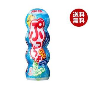 【送料無料】UHA味覚糖 ぷっちょグミ ソーダ 38g×10個入|misonoya