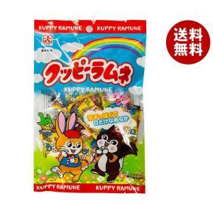 送料無料 【2ケースセット】カクダイ製菓 ピロークッピーラムネ 50g×12袋入×(2ケース)