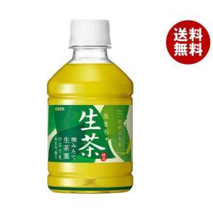 【送料無料】【2ケースセット】キリン 【HOT用】ホット生茶 280mlペットボトル×24本入×(2ケース)