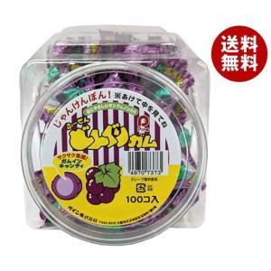 【送料無料】パイン どんぐりガム グレープ 100個入|misonoya