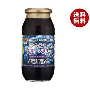 【送料無料】加藤美蜂園本舗 はちみつブルーベリー 650g瓶×6本入|misonoya