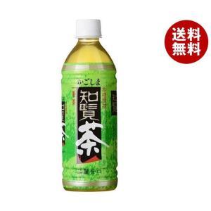 【送料無料】薩摩酒造 かごしま知覧茶 500mlペットボトル×24本入|misonoya