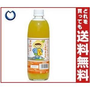 【送料無料】宇都宮物産 じゅんた 河内晩柑ジュース(ストレート) 500ml瓶×12本入