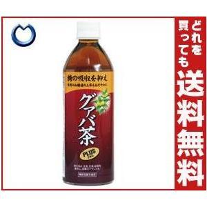 【送料無料】宝積飲料 グァバ茶プラス 500mlペットボトル×24本入