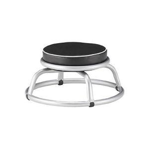 TRUSCO(トラスコ) 300Φ回転作業椅子 Φ300×H240 TYZ255-24H mississippi