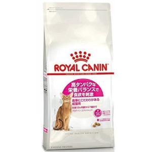 ロイヤルカナン FHN プロテインエクシジェント 猫用 2kg|mississippi
