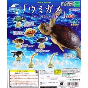 地球生命紀行 カプセルコレクション ウミガメ&サンゴ礁を彩る生き物 ガチャ エポック(全8種フルコンプセット)|mississippi