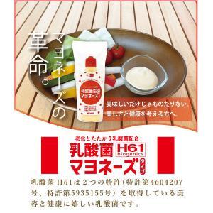 新商品 乳酸菌H61マヨネーズタイプ220g|mitaniya|02