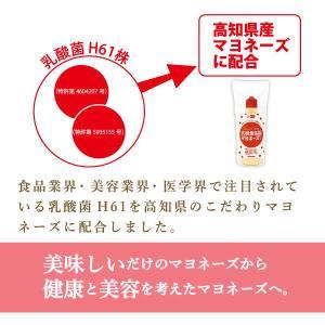 新商品 乳酸菌H61マヨネーズタイプ220g|mitaniya|03