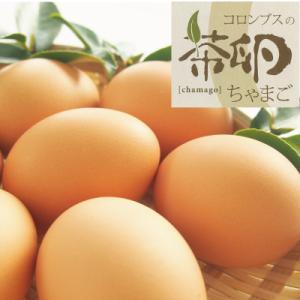 高知県四万十町産/コロンブスの茶卵6個入|mitaniya
