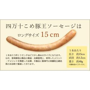 四万十こめ豚王 極ソーセージ 4本入|mitaniya|08