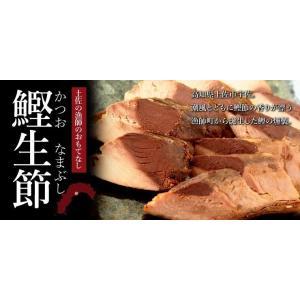 国産 鰹(かつお) 使用 生節 魚(いよ)まるかじり しょうが味 1本入|mitaniya|04