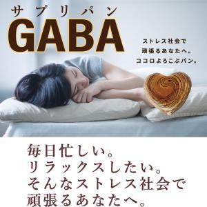 【常温】送料無料!!サプリパンGABA〜ビターチョコ味〜 mitaniya 02