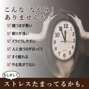 【常温】送料無料!!サプリパンGABA〜ビターチョコ味〜 mitaniya 04
