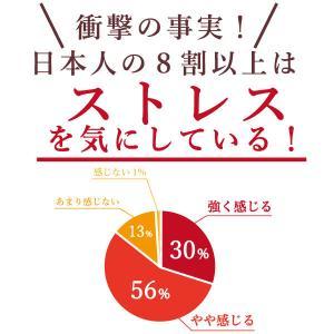 【常温】送料無料!!サプリパンGABA〜ビターチョコ味〜 mitaniya 05