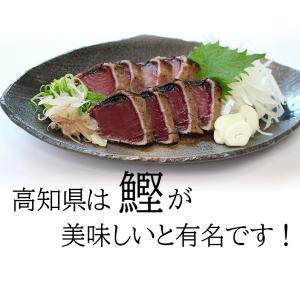 【常温】送料無料!!かつお角煮2個セット|mitaniya|03
