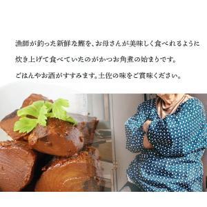 【常温】送料無料!!かつお角煮2個セット|mitaniya|05