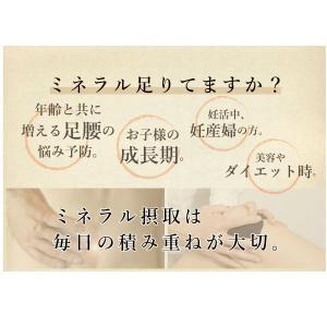 【常温】送料無料!ケンコツふりかけ3本セット|mitaniya|03