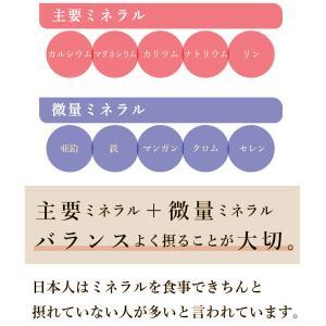 【常温】送料無料!ケンコツふりかけ3本セット|mitaniya|05