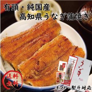 【冷凍】高知 国産 鰻 蒲焼 食べ比べセット 贈り物 ギフト 内祝 御歳暮 御中元 高知 特産品