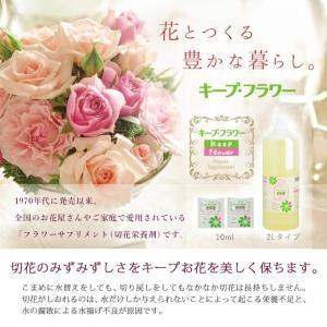 切花栄養剤/切花延命剤 キープ・フラワー 小袋...の詳細画像1