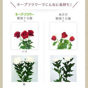切花栄養剤/切花延命剤 キープ・フラワー 小袋...の詳細画像2