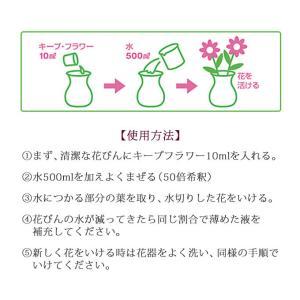 切花栄養剤/切花延命剤 キープ・フラワー 小袋...の詳細画像3