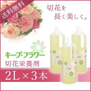 切花栄養剤/切花延命剤 キープ・フラワー 2L×3本セット