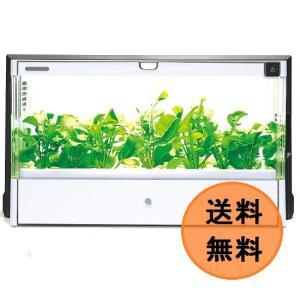 ★在庫即納!★UH-A01E ユーイング 水耕栽培器セット Green Farm(グリーンファーム)★送料無料(沖縄・離島を除く)★|mitene
