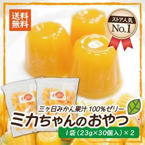 ミカちゃんのおやつ 2袋セット 三ヶ日みかんゼリー 果汁100% miti-fujikawarakuza