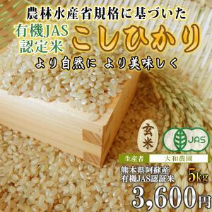 熊本 阿蘇 令和元年産  有機栽培米コシヒカリ(玄米)5kg 大和農園|mitinoekiaso