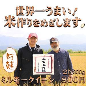 熊本 阿蘇  令和元年産  ミルキークイーン 2合 300g 中山親子 金賞5回受賞農家 アグリテック保久土|mitinoekiaso