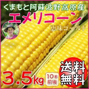 とうもろこし 熊本 阿蘇 お中元 ギフト スイートコーン 波野高原産 エメリコーン 恵味ゴールド 3.5kg|mitinoekiaso