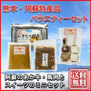 お中元 熊本 阿蘇 ギフト 特産品バラエティセット05 阿蘇のあか牛・馬肉とスイーツのミニセット|mitinoekiaso
