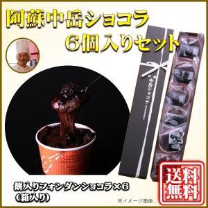熊本 阿蘇 ギフト 阿蘇中岳ショコラ 6個入りセット 菓心なかむら 中村製菓 冷凍品|mitinoekiaso