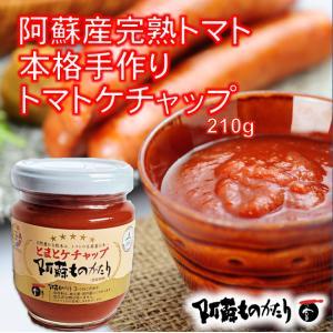 阿蘇産の完熟とまとたっぷり本格手作りケチャップ210g/阿蘇ものがたり|mitinoekiaso