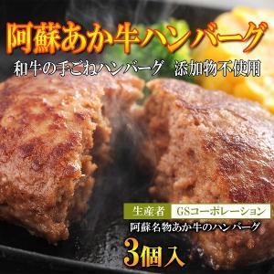 阿蘇のブランド和牛あか牛の手作りハンバーグ/GSコーポレーション|mitinoekiaso