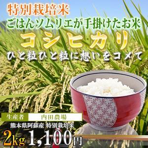 熊本 阿蘇 コシヒカリ 2kg 内田農場 令和2年産 お米ソムリエが手掛けた米|mitinoekiaso
