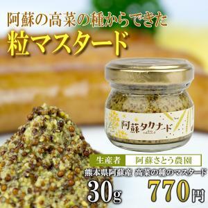 阿蘇高菜の国産マスタード「阿蘇タカナード」30g/阿蘇さとう農園|mitinoekiaso