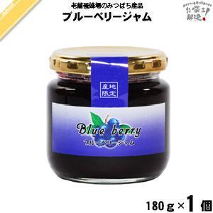ブルーベリージャム (180g) 藤井養蜂場 「5250円以上で送料無料」 mitsubachi-road