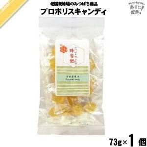プロポリス飴 (73g) はちみつ 蜂蜜 キャンディ 藤井養蜂場 mitsubachi-road