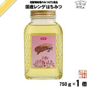 国産レンゲはちみつ 瓶入 (750g) 藤井養蜂場 れんげ 蜂蜜 国内産|mitsubachi-road