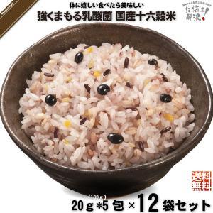 「12個セット」 強くまもる乳酸菌 国産 十六穀米 (20g×5包) 雑穀 雑穀米 美味しい 特0 mitsubachi-road