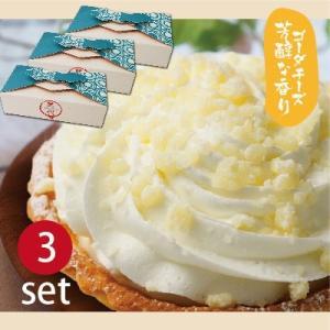 結心 cocoro −3種のレアチーズ−(2個入り×3セット)/まとめ買いがお得/ギフト/プレゼント/タルト/プチフール/スイーツ/ご挨拶/お祝い|mitsuboshi