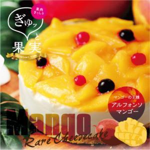 マンゴー レアチーズケーキ ぎゅッと果実 マンゴーフルーツケーキ(4号・12cm) スイーツ ギフト プレゼント パーティ 贈り物 贈答 手土産 冷凍|mitsuboshi