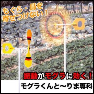 もぐらよけ 鳥よけ 鳥避け もぐら避け 鳥・モグラの侵入を防ぐ モグラくんとーりま専科 ST|mitsugiron