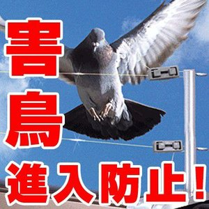 鳩よけ ハトよけ 鳥よけ ベランダ用テグスセット|mitsugiron